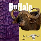African Wildlife (Buffalo) by capcosta