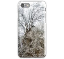 A l'abandon iPhone Case/Skin
