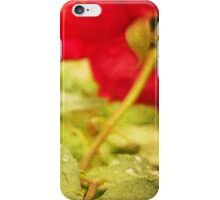 A string of pearls for a rose - Rain Drops Red Rose iPhone Case/Skin