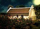 Cottage Rose Garden by RC deWinter