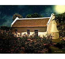 Cottage Rose Garden Photographic Print