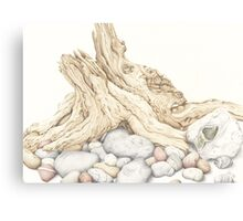 Driftwood and Pebbles Canvas Print
