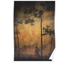 Sunset in the Everglades Poster