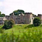 Pembridge Castle - side view by missmoneypenny