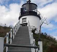 Owls Head Light by Monnie Ryan