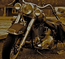 My Harley - Davidson   -  Road to Hell . Brown Sugar Story. F* View (816) favorited by (2) thank you ! Hold Your Memories. Buy what you like! by AndGoszcz