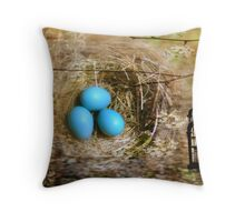 Blossoms, birdcage, eggs and nest Throw Pillow