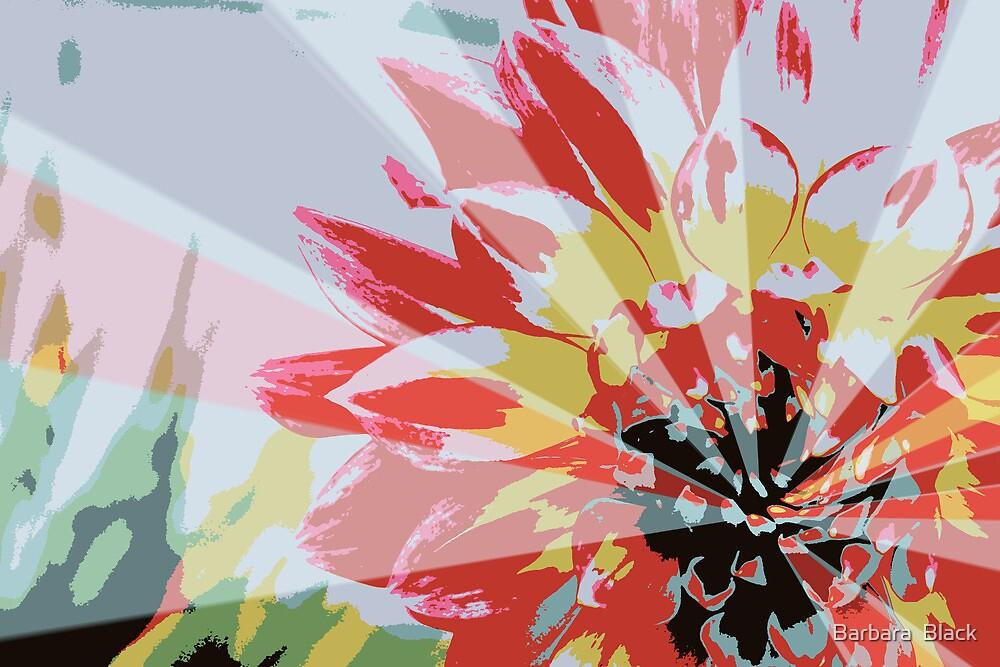 A Playful Flower by Barbara  Black
