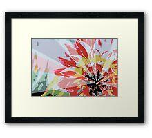 A Playful Flower Framed Print