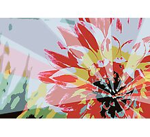 A Playful Flower Photographic Print
