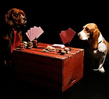 Backyard Poker by monicaneira
