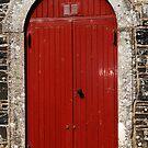 Red Door by sarnia2