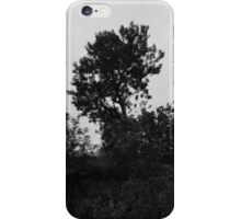 Trees on a hillside iPhone Case/Skin