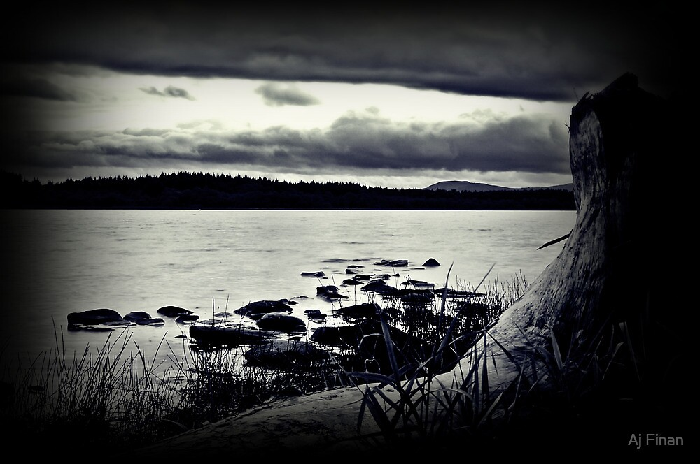 All The Elements At Lake Mentieth. by Aj Finan