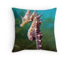 I have the crown, Therefore I am King. Throw Pillow