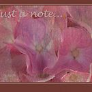 Romantic Pinks - card by steppeland