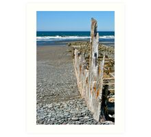 Salmon River Beach Art Print