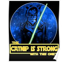 Catnip Is Strong With This One Poster