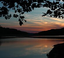 Clarks Creek Sunset by Lori Deiter