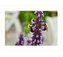 Bees Everywhere.... Art Print