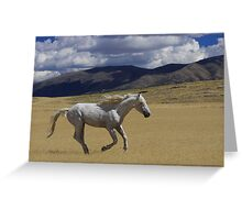 Freedom On The Run Greeting Card