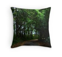 A Bend in the Woods Throw Pillow