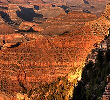 Grand Canyon by LudaNayvelt