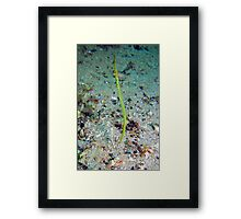 Missing Pipe. Framed Print
