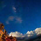Night in Fiji by Andrew & Mariya  Rovenko