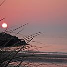 Goodnight to the Beach by Debbie  Roberts