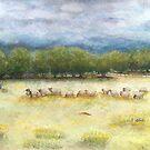 Eigth Rd Sheep Paddock by Karen Fernandez