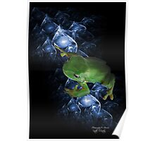 Mystical Frog Poster