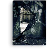 11.9.2010: Through the Wall Canvas Print
