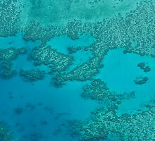 the reef from above by Shauna Stannard