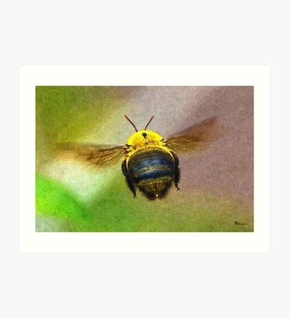 Bumblebees Flight Art Print