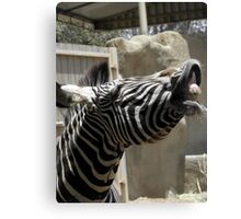 Who said animals dont have a sense of humor ? Canvas Print