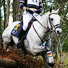 Kirby Park Irish Jester by Falls Creek Photographics