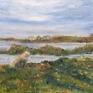Low Tide, Millisle by Les Sharpe