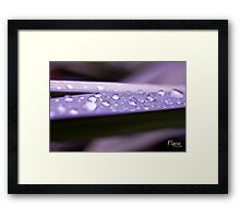Showertown.  Population: 47 Framed Print