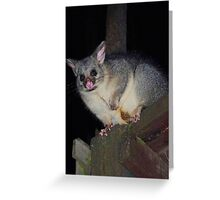 Blossom Possum Greeting Card