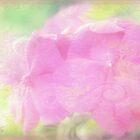 Enchanted garden 2 by aMOONy