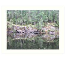 Squirrel Rapids - Algonquin Provincial Park Art Print
