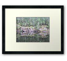 Squirrel Rapids - Algonquin Provincial Park Framed Print