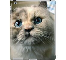 Willow the Wise iPad Case/Skin
