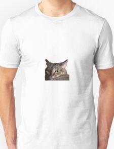 Tai is Beauty, Tai is Grace T-Shirt