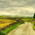 A Quiet Road in The Yorkshire Dales by patrixpix