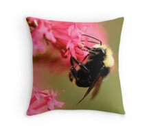 Clinging to a Cliff of Pink Throw Pillow