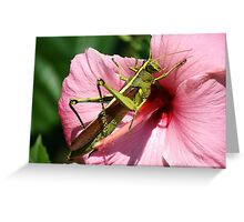 I Love You Flower Greeting Card