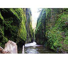 Water Way Photographic Print
