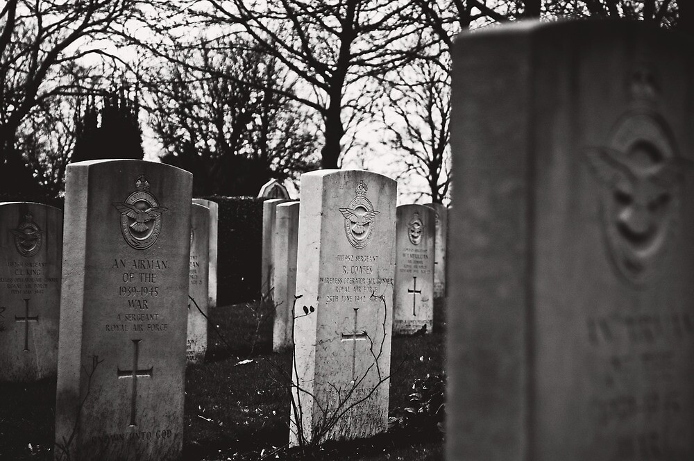 Fallen Heroes by Danny Roozen